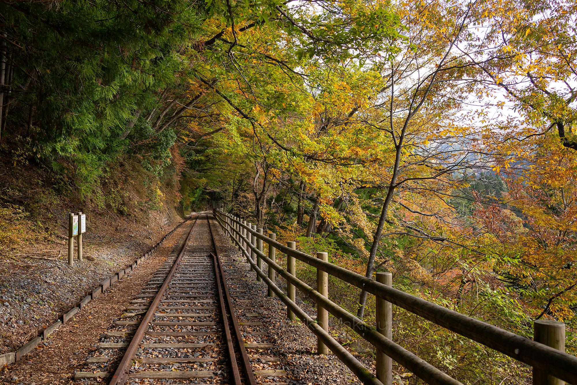 ディープな大井川(1) 井川湖畔の廃線ウォーク 歴史を刻む線路跡