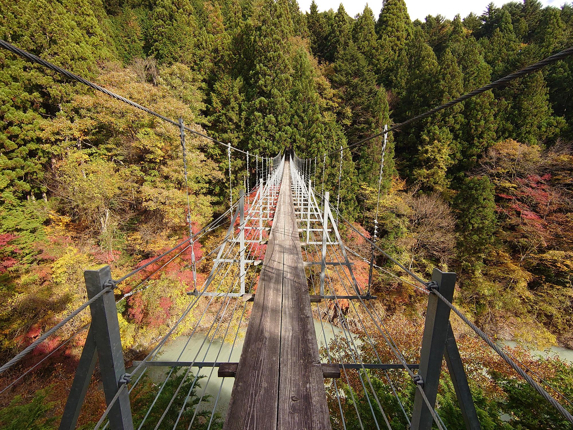 ディープな大井川(2) ダムカレーと吊り橋とリニアと