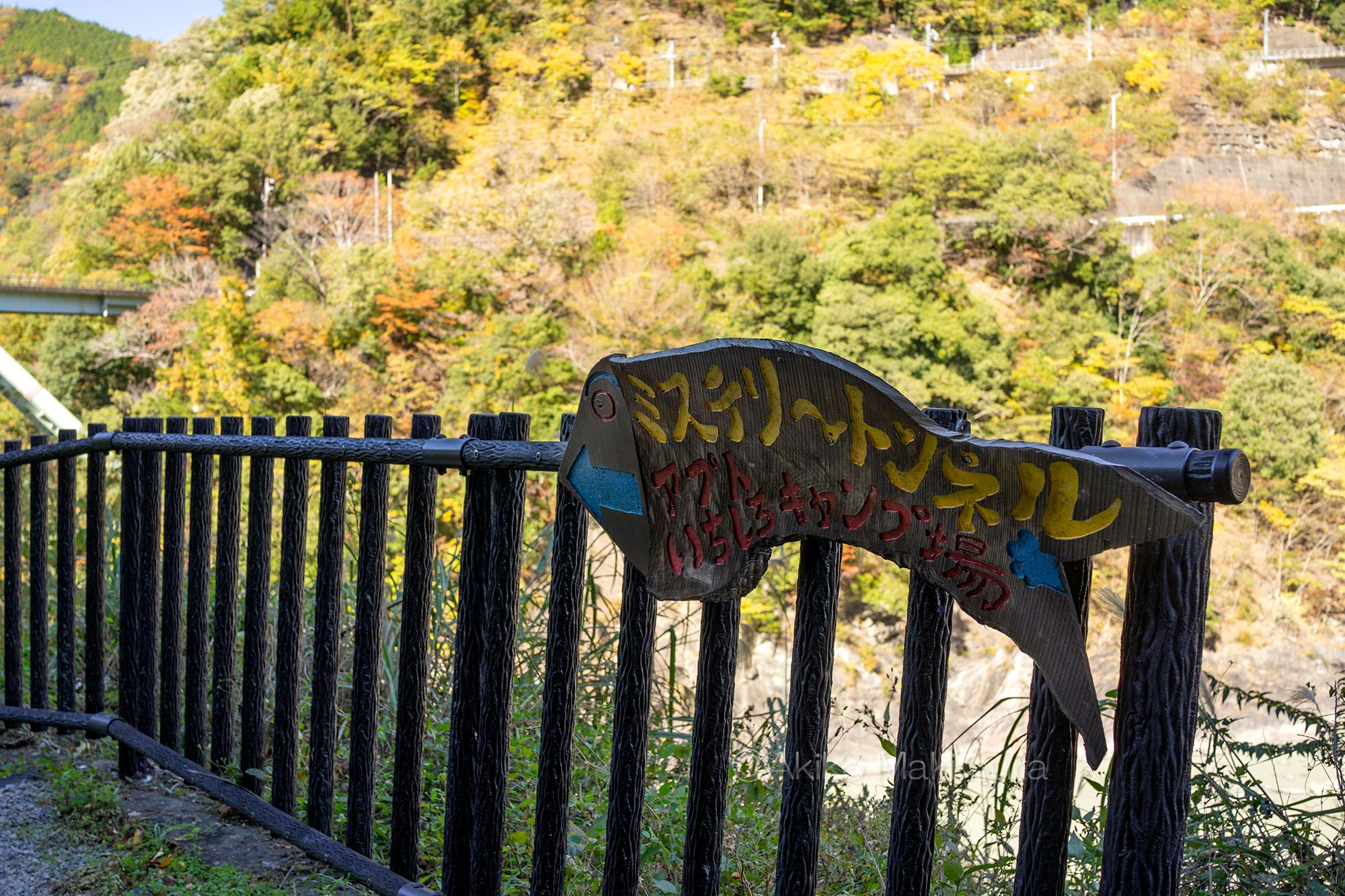 ディープな大井川(4) ミステリートンネルを一人探索