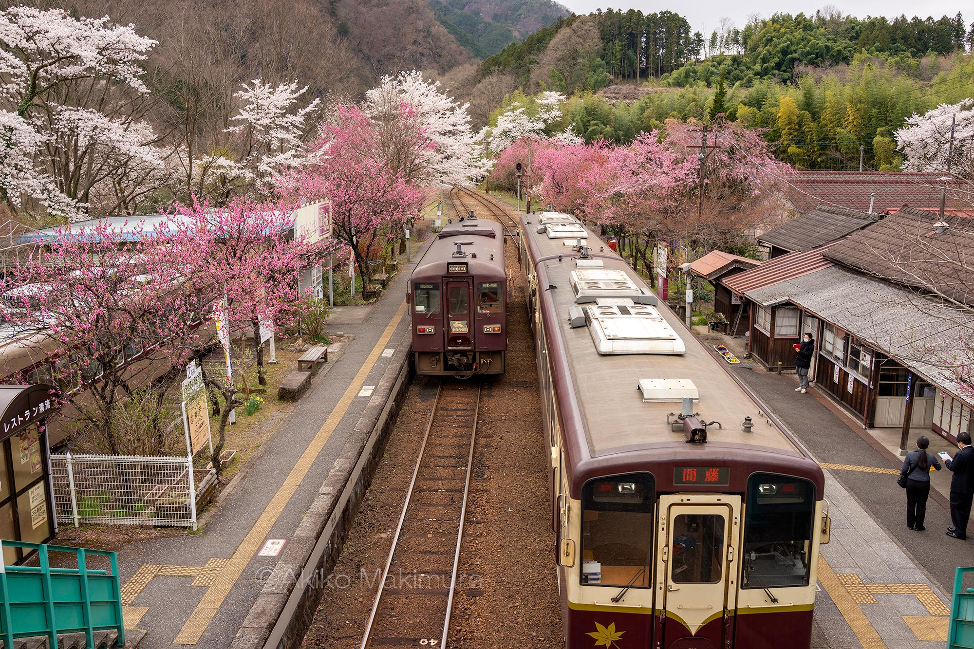 古い駅舎に咲く花桃 神戸駅を訪ねて わたらせ渓谷鉄道の旅4