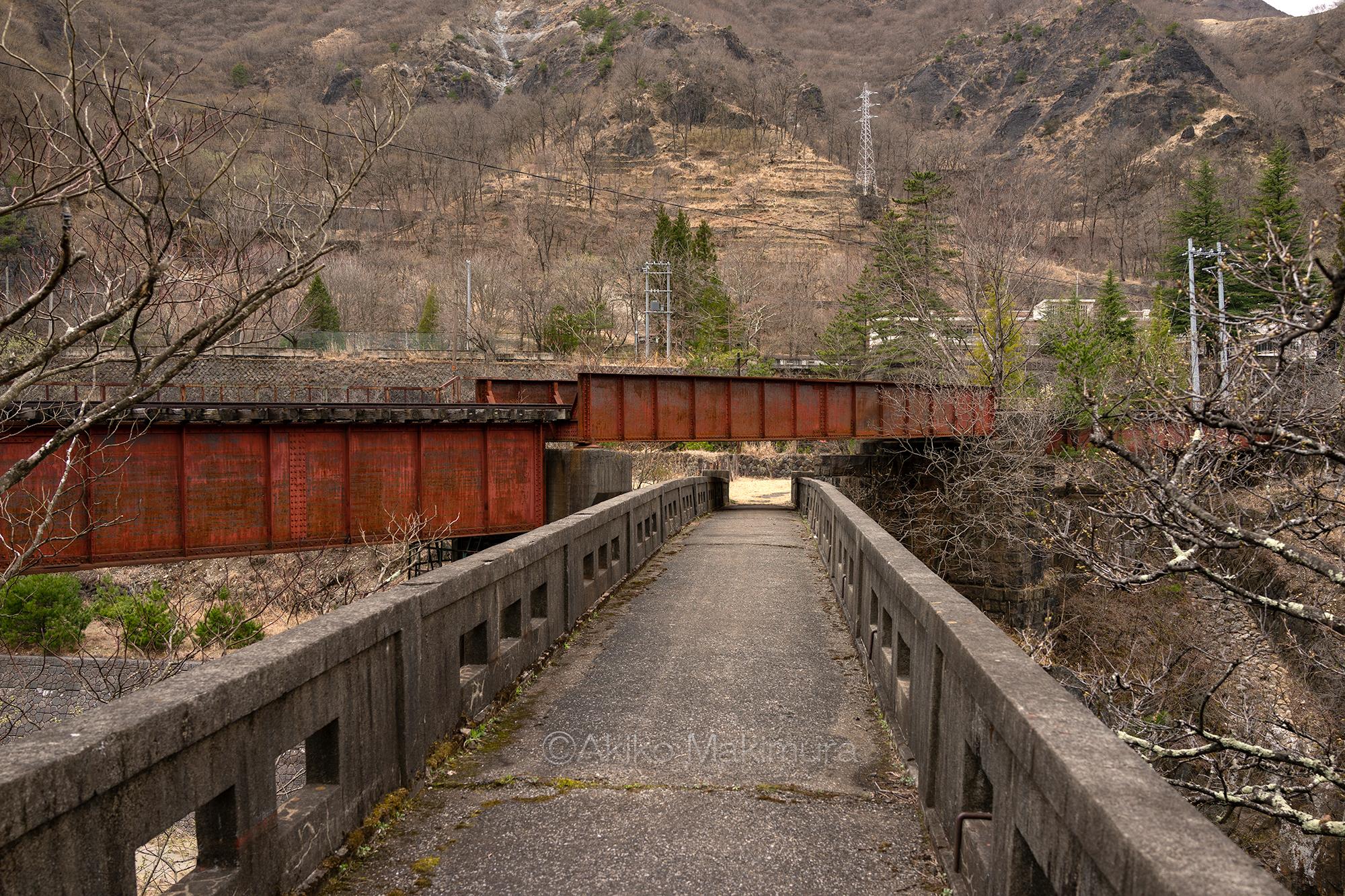 終点間藤駅の先、消えた貨物駅に続く廃線を追う わたらせ渓谷鉄道の旅10