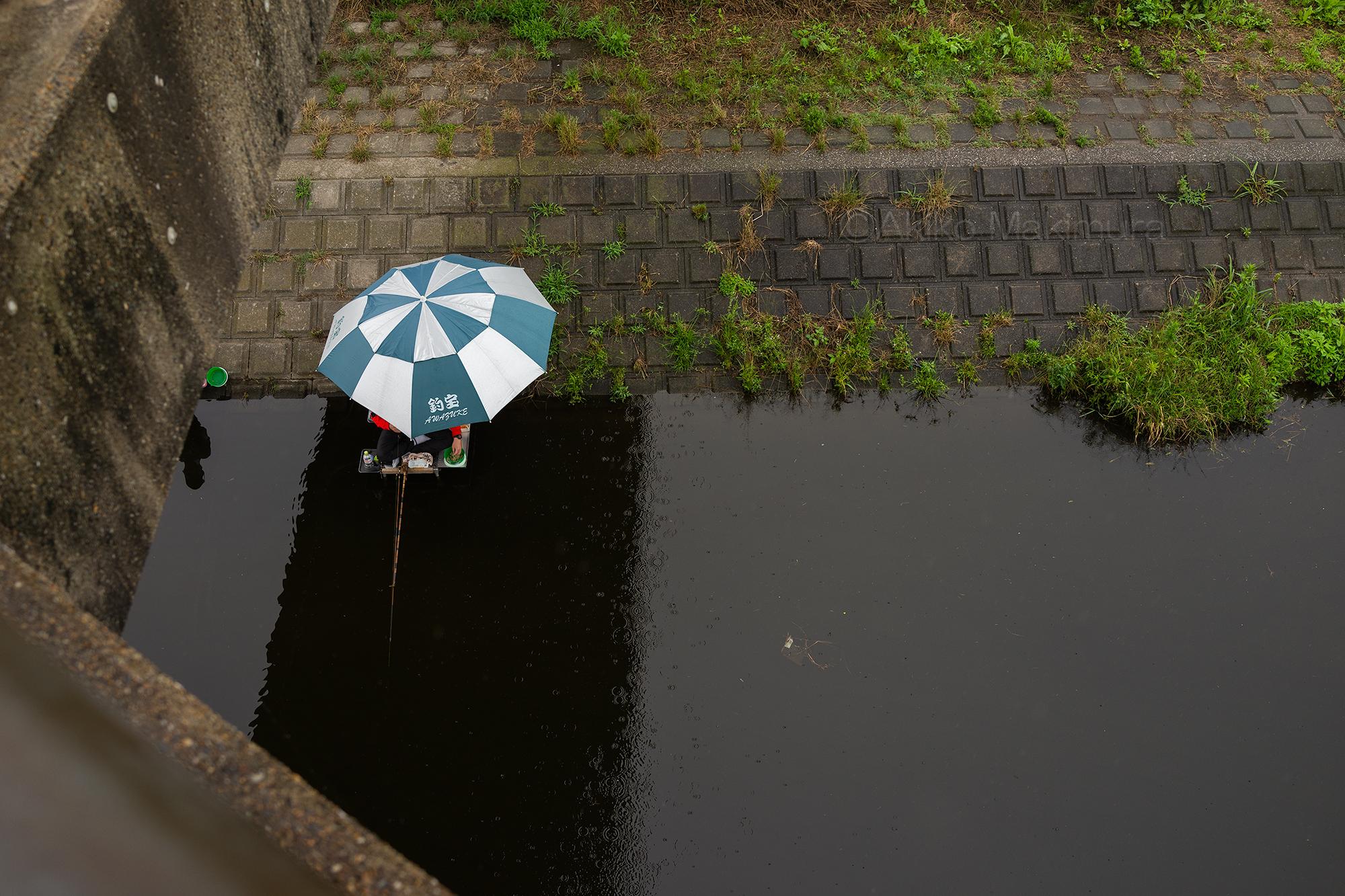 梅雨のびん沼川