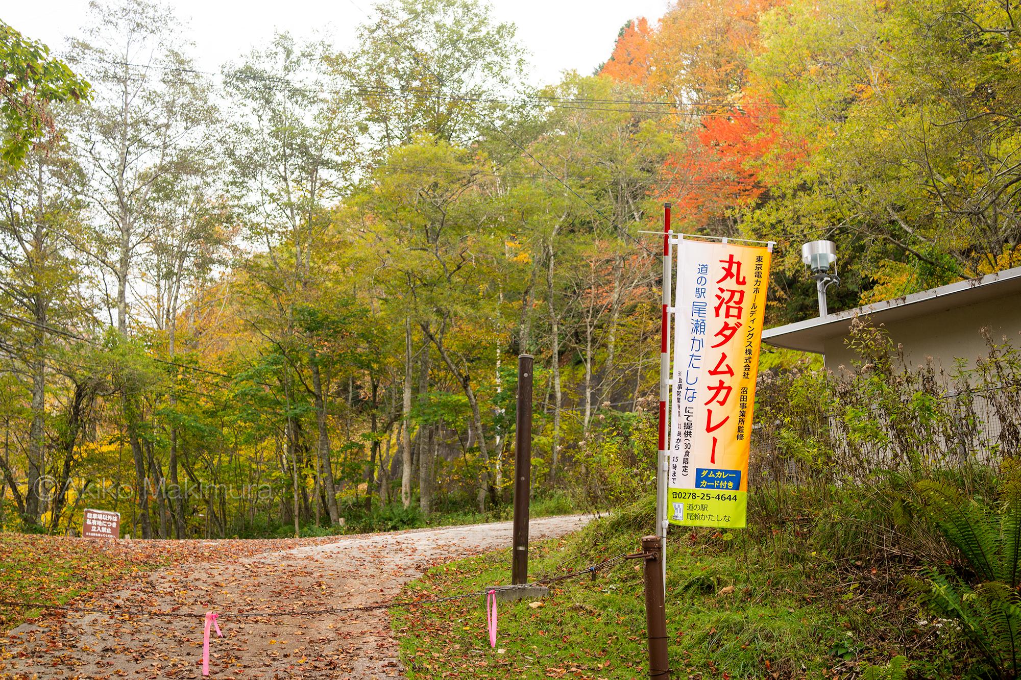 希少なバットレスダム 紅葉の丸山ダム ~群馬県片品村へ8~