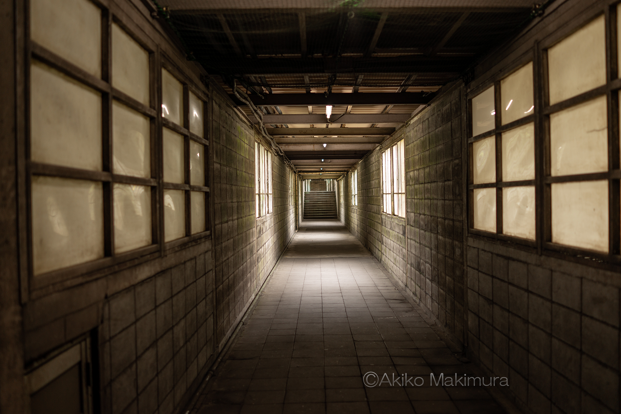 写真で魅せる土合駅